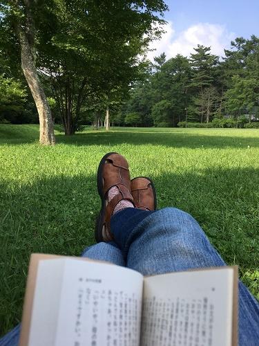令和元年8月4日 公園.jpg